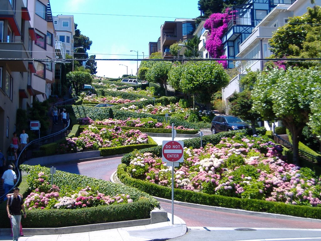 """Lombard Street in San Francisco"""