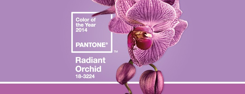 """""""Radiant Orchid"""""""