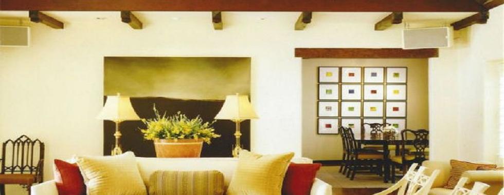 top_interior_designer_shelly_gordon_cover