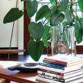 feature image Contemporary Living Room Designs by Waldo Fernadez
